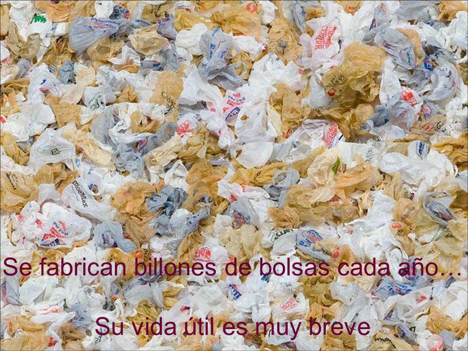 Se fabrican billones de bolsas cada año… Su vida útil es muy breve