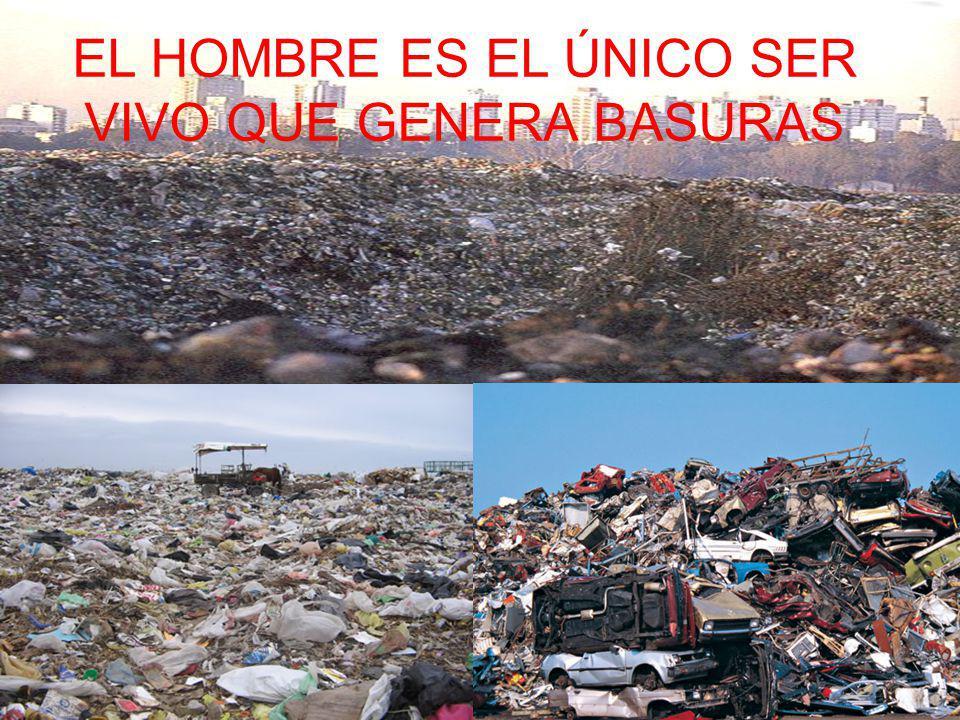 Producimos mas de 500 Kg. de basura por persona al año