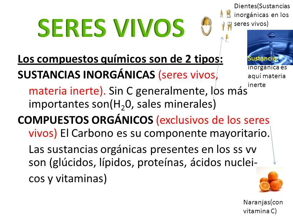 Los compuestos químicos son de 2 tipos: SUSTANCIAS INORGÁNICAS (seres vivos, materia inerte). Sin C generalmente, los más importantes son(H 2 0, sales
