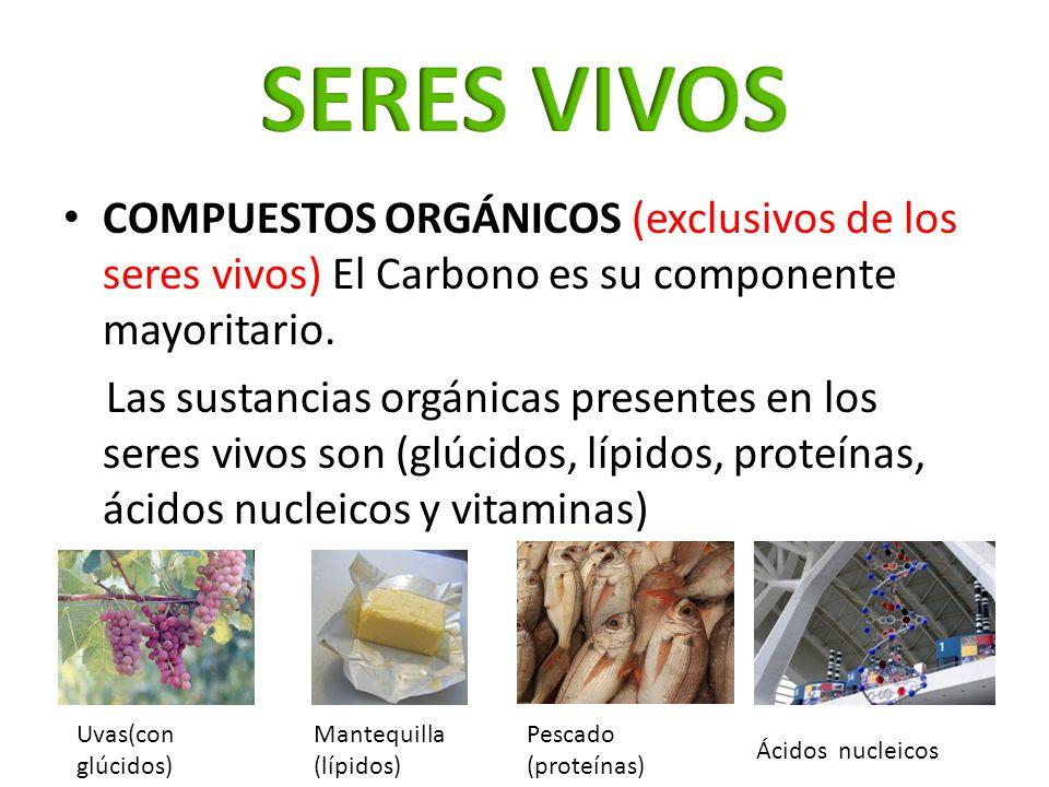 COMPUESTOS ORGÁNICOS (exclusivos de los seres vivos) El Carbono es su componente mayoritario. Las sustancias orgánicas presentes en los seres vivos so