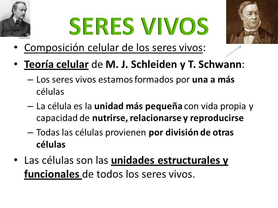 Composición celular de los seres vivos: Teoría celular de M. J. Schleiden y T. Schwann: – Los seres vivos estamos formados por una a más células – La
