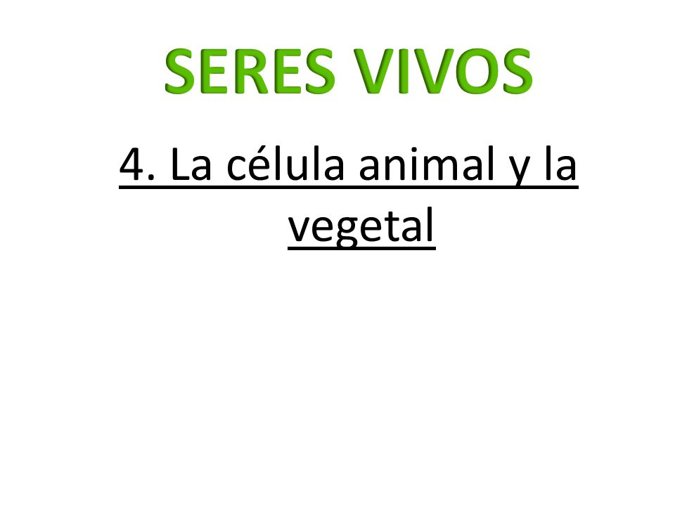 4. La célula animal y la vegetal