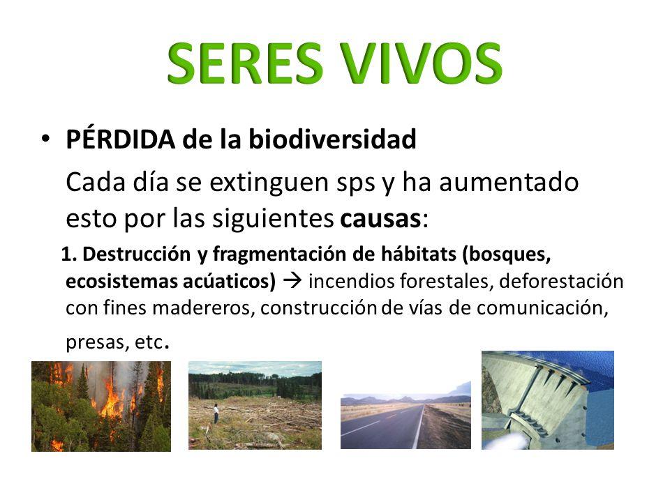 PÉRDIDA de la biodiversidad Cada día se extinguen sps y ha aumentado esto por las siguientes causas: 1. Destrucción y fragmentación de hábitats (bosqu