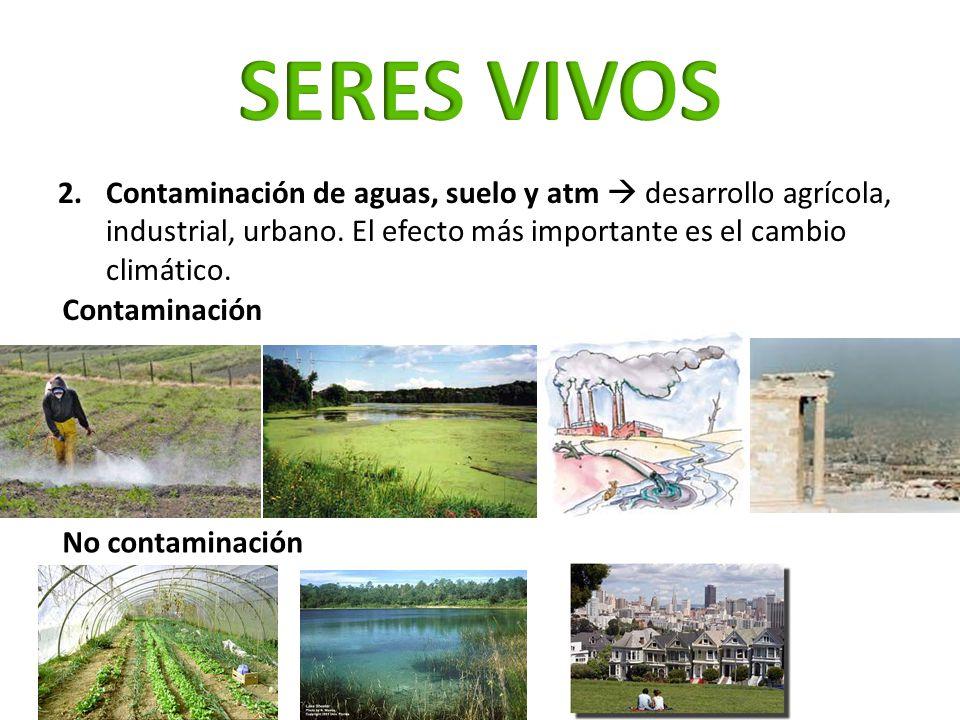 2.Contaminación de aguas, suelo y atm desarrollo agrícola, industrial, urbano. El efecto más importante es el cambio climático. Contaminación No conta