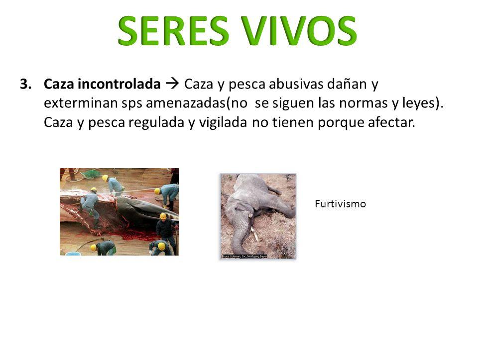 3.Caza incontrolada Caza y pesca abusivas dañan y exterminan sps amenazadas(no se siguen las normas y leyes). Caza y pesca regulada y vigilada no tien