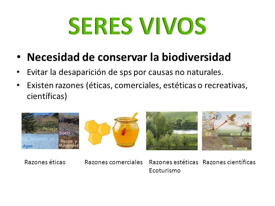 Necesidad de conservar la biodiversidad Evitar la desaparición de sps por causas no naturales. Existen razones (éticas, comerciales, estéticas o recre