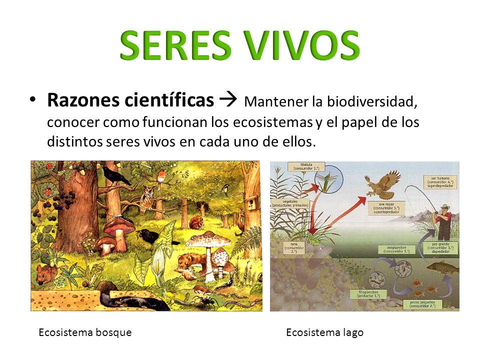 Razones científicas Mantener la biodiversidad, conocer como funcionan los ecosistemas y el papel de los distintos seres vivos en cada uno de ellos. Ec