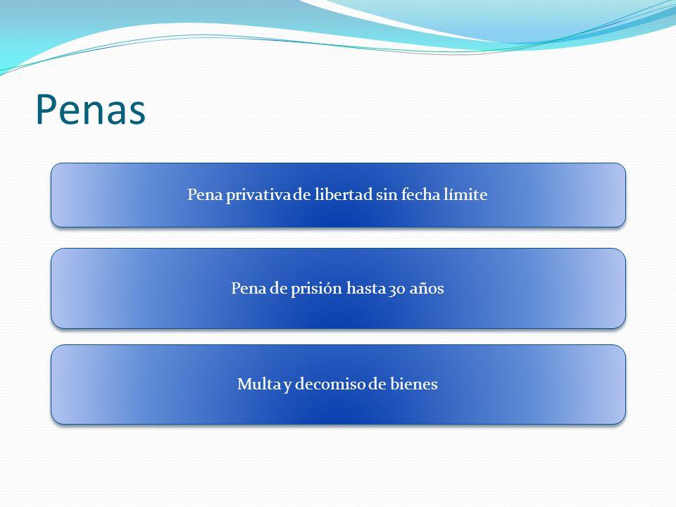 Penas Pena privativa de libertad sin fecha límite Pena de prisión hasta 30 años Multa y decomiso de bienes