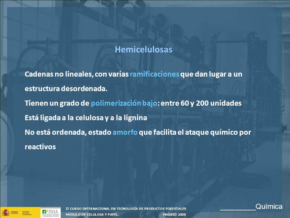 Hemicelulosas Cadenas no lineales, con varias ramificaciones que dan lugar a un estructura desordenada. Tienen un grado de polimerización bajo: entre