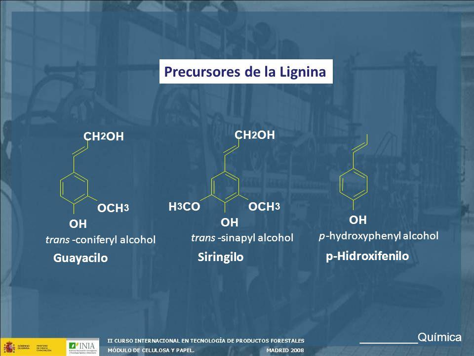 Precursores de la Lignina OH OCH 3 H 3 CO CH 2 OH OCH 3 CH 2 OH trans-coniferyl alcohol trans-sinapyl alcohol p-hydroxyphenyl alcohol Guayacilo Siring