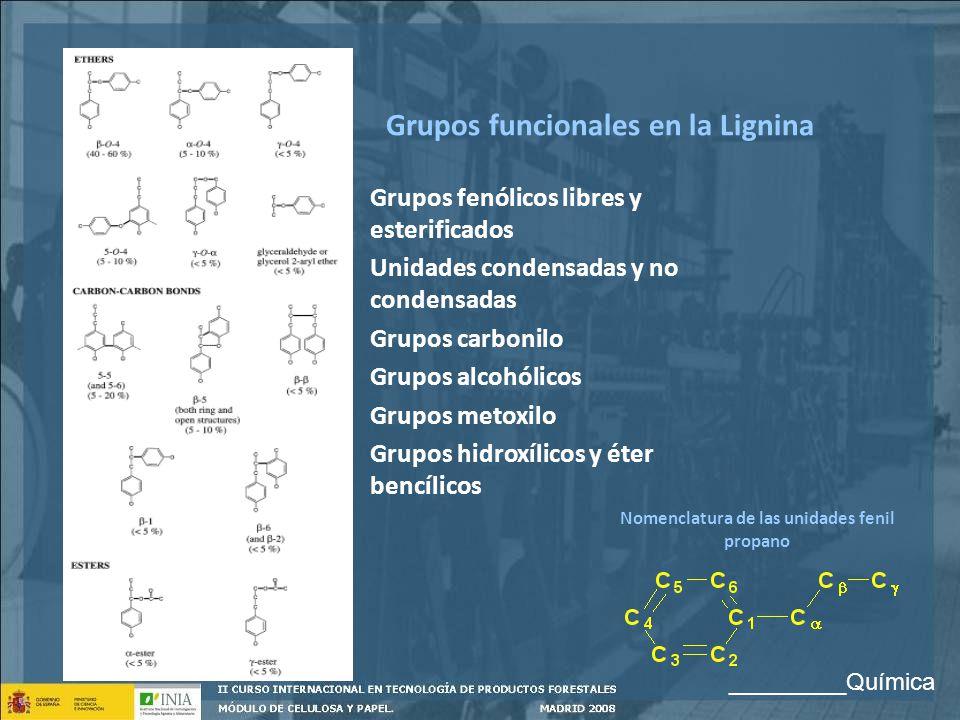 Grupos funcionales en la Lignina Grupos fenólicos libres y esterificados Unidades condensadas y no condensadas Grupos carbonilo Grupos alcohólicos Gru