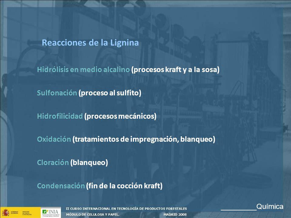 Reacciones de la Lignina Hidrólisis en medio alcalino (procesos kraft y a la sosa) Sulfonación (proceso al sulfito) Hidrofilicidad (procesos mecánicos