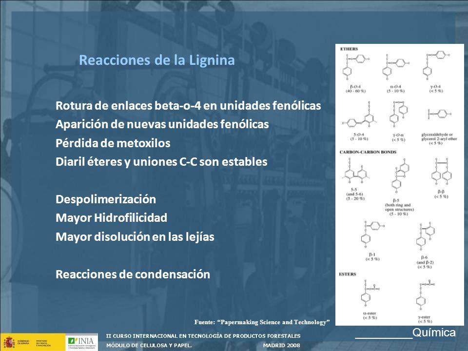 Rotura de enlaces beta-o-4 en unidades fenólicas Aparición de nuevas unidades fenólicas Pérdida de metoxilos Diaril éteres y uniones C-C son estables
