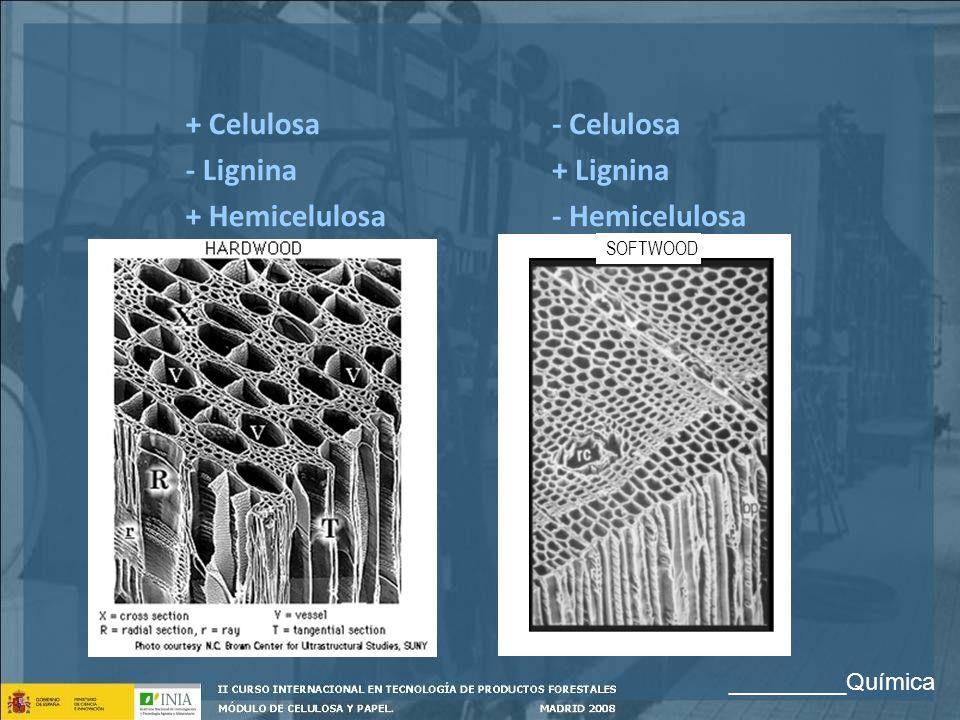 SOFTWOOD - Celulosa + Lignina - Hemicelulosa + Celulosa - Lignina + Hemicelulosa _________Química