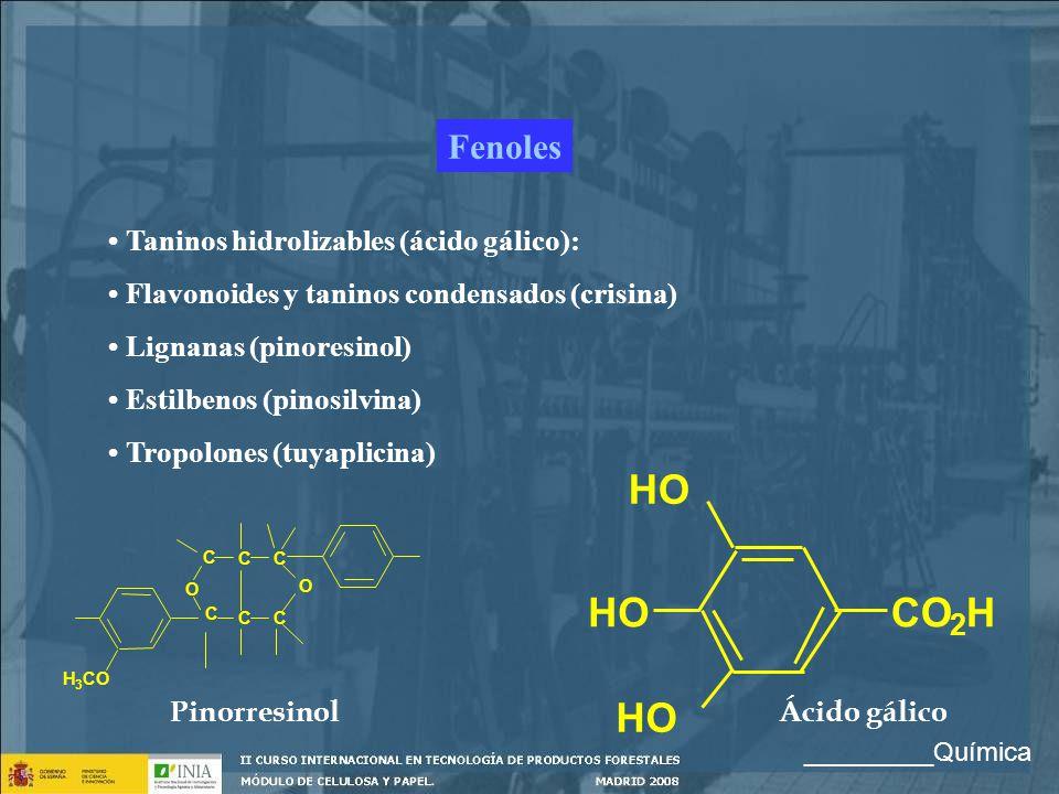Fenoles Taninos hidrolizables (ácido gálico): Flavonoides y taninos condensados (crisina) Lignanas (pinoresinol) Estilbenos (pinosilvina) Tropolones (