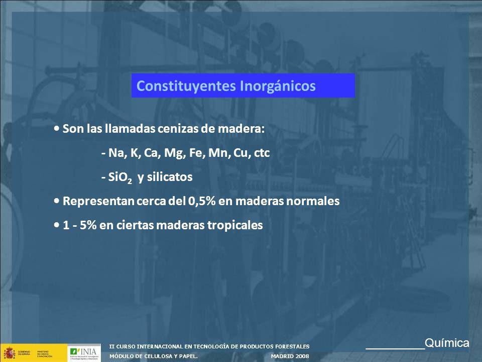 Constituyentes Inorgánicos Son las llamadas cenizas de madera: - Na, K, Ca, Mg, Fe, Mn, Cu, ctc - SiO 2 y silicatos Representan cerca del 0,5% en made