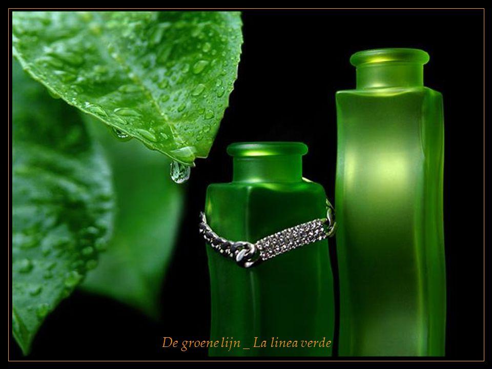 De groene lijn _ La linea verde