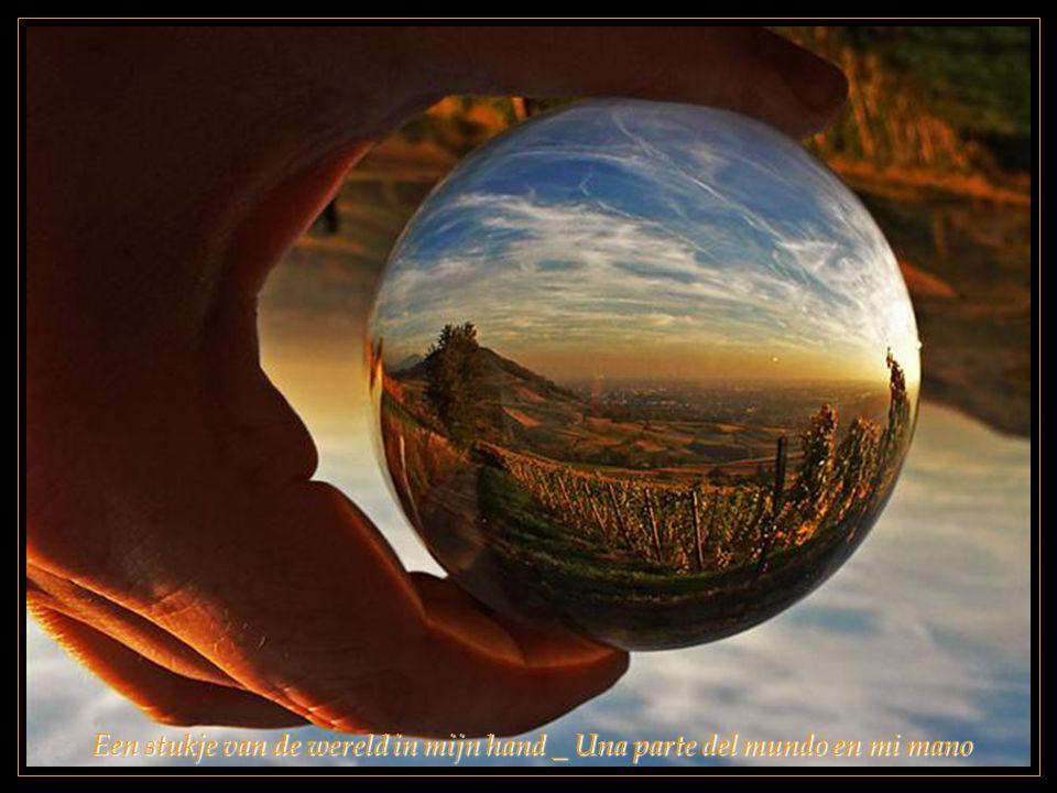 Een stukje van de wereld in mijn hand _ Una parte del mundo en mi mano