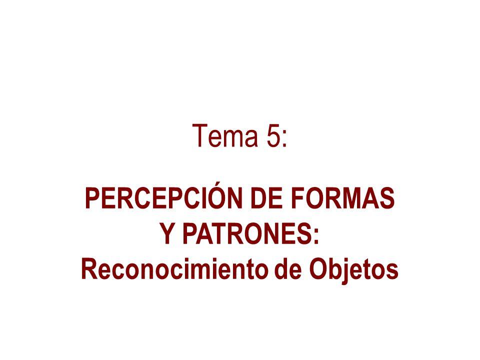 Tema 5: PERCEPCIÓN DE FORMAS Y PATRONES: Reconocimiento de Objetos