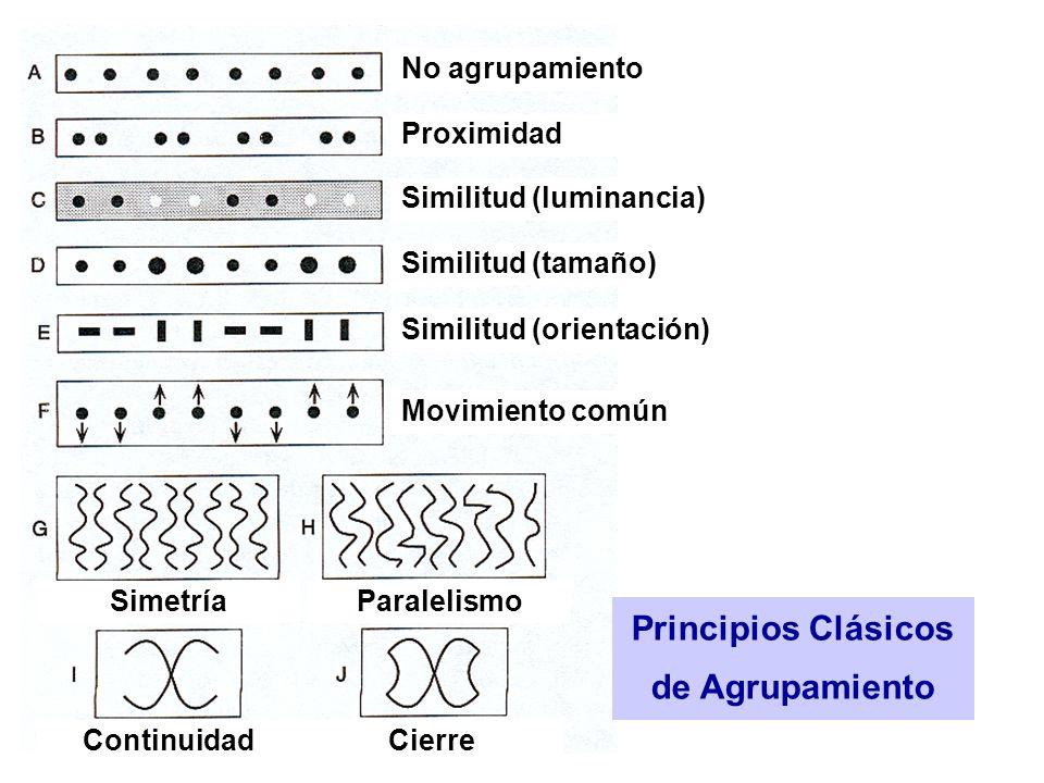 Principios Clásicos de Agrupamiento No agrupamiento Proximidad Similitud (luminancia) Similitud (tamaño) Similitud (orientación) Movimiento común SimetríaParalelismo ContinuidadCierre