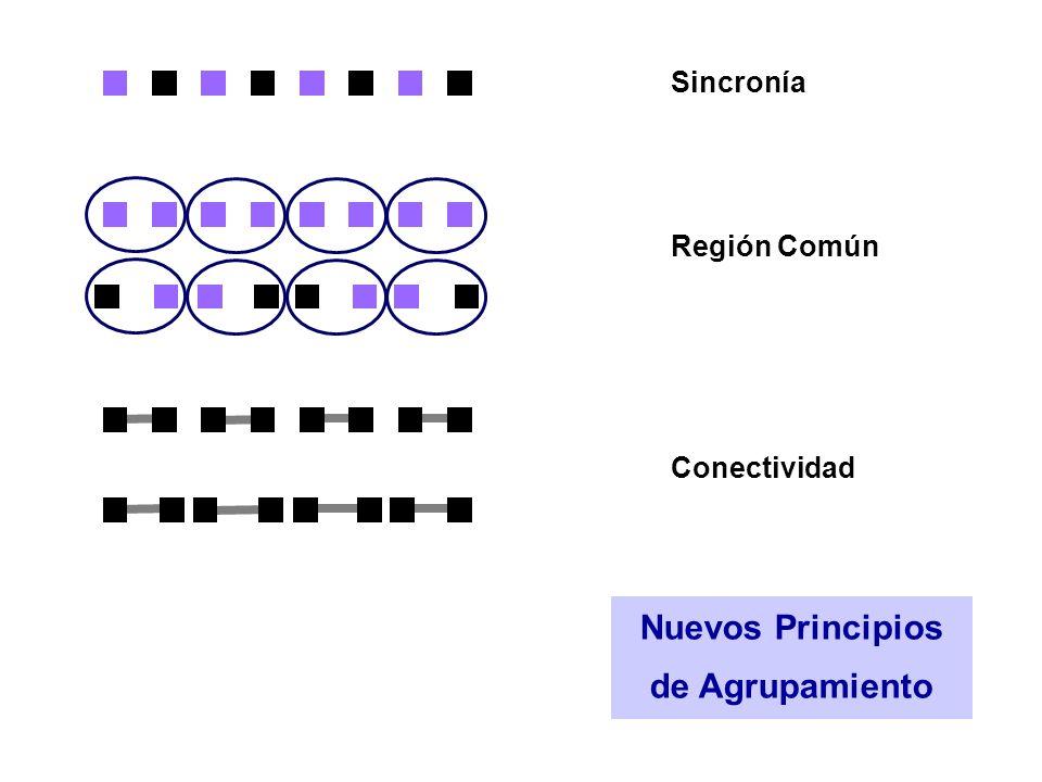Nuevos Principios de Agrupamiento Sincronía Región Común Conectividad