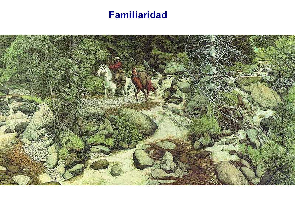 Familiaridad