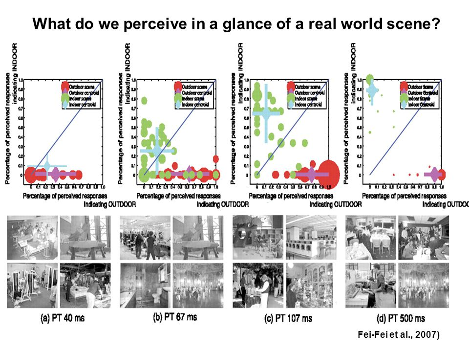 What do we perceive in a glance of a real world scene? Fei-Fei et al., 2007)