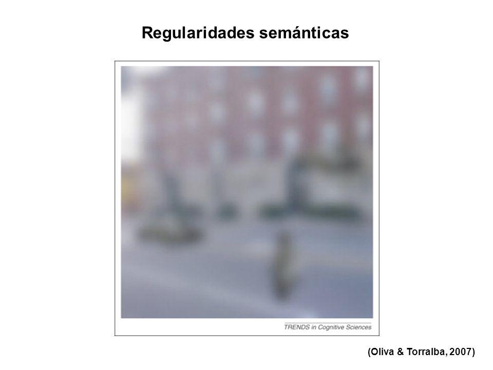 Regularidades semánticas (Oliva & Torralba, 2007)