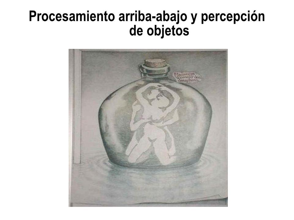 Procesamiento arriba-abajo y percepción de objetos