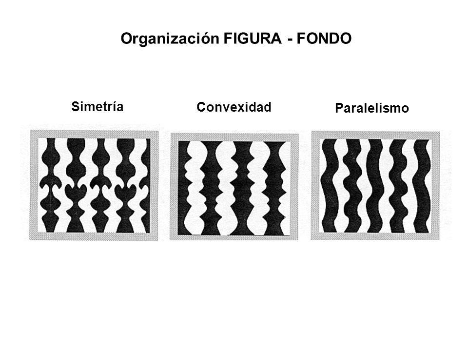 Organización FIGURA - FONDO Simetría Convexidad Paralelismo