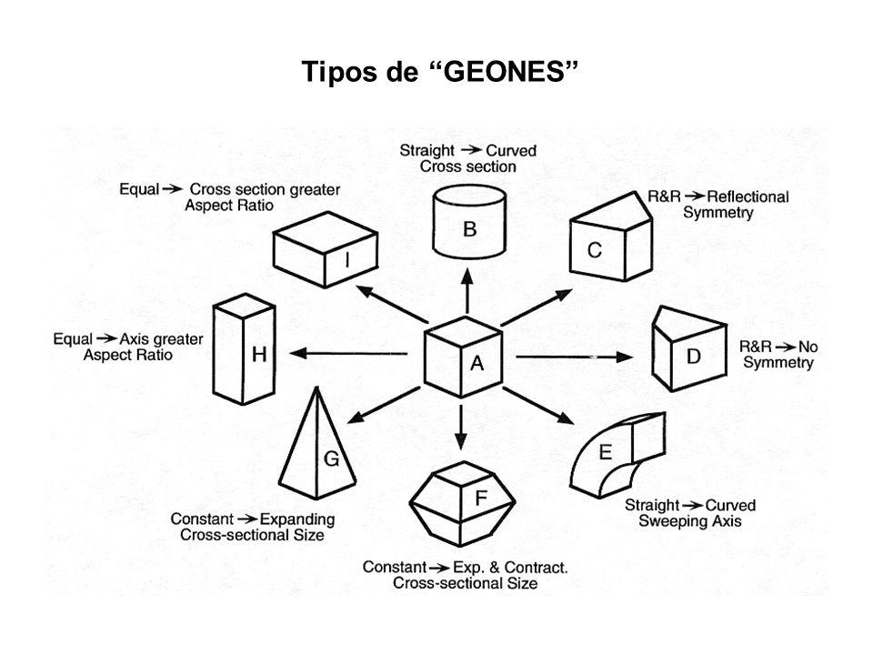 Tipos de GEONES