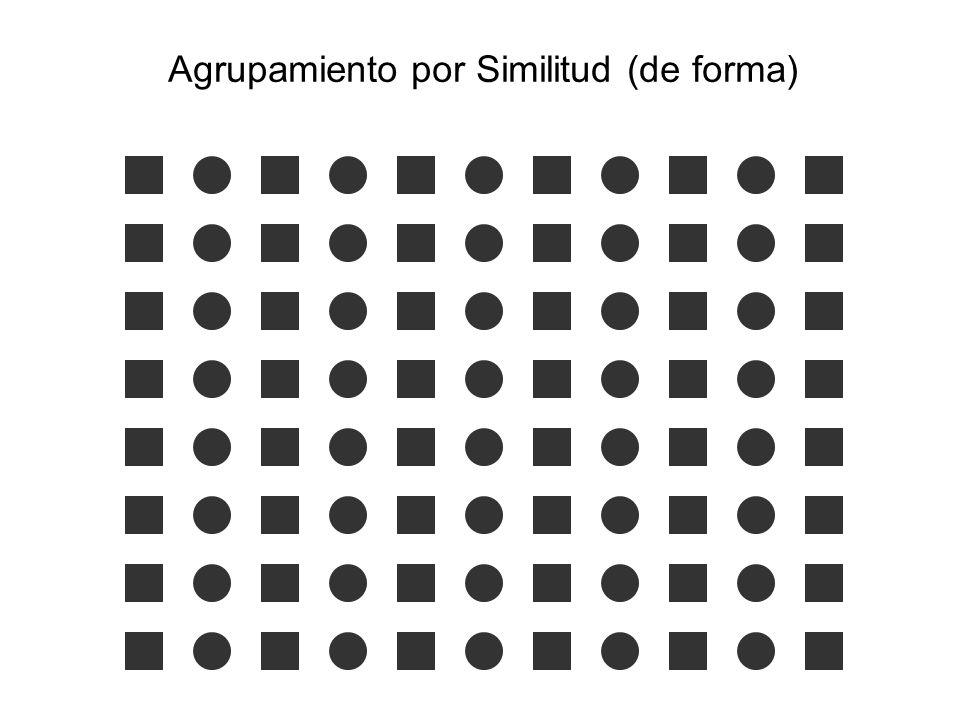 Agrupamiento por Similitud (de forma)