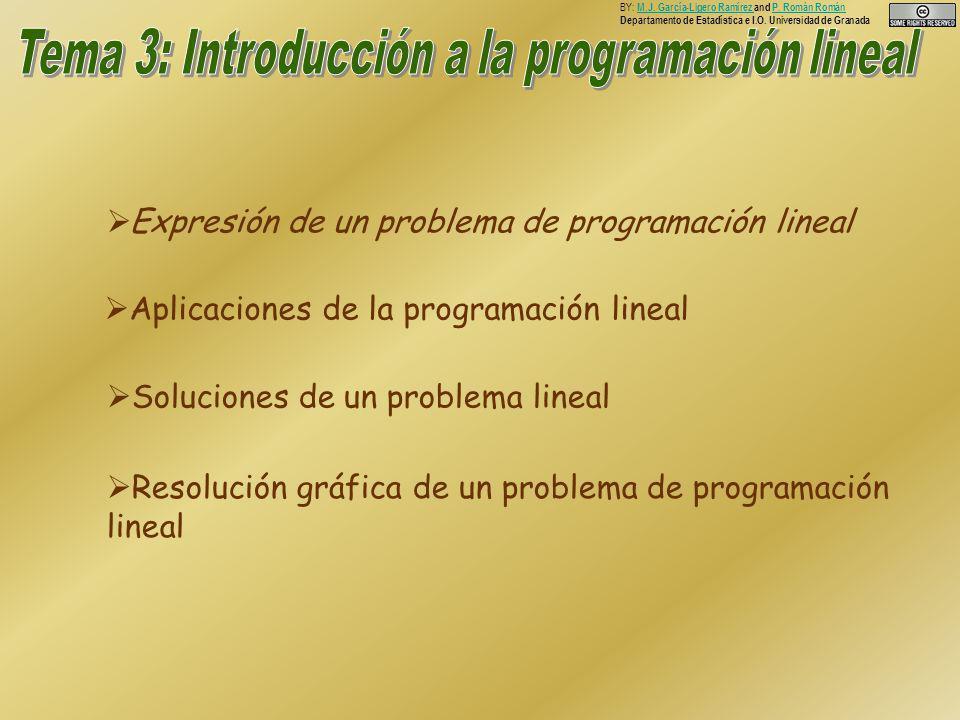 Expresión de un problema de programación lineal Aplicaciones de la programación lineal Soluciones de un problema lineal Resolución gráfica de un problema de programación lineal BY: M.J.