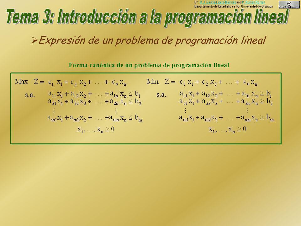 Expresión de un problema de programación lineal Expresión de un problema de programación lineal BY: M.J.
