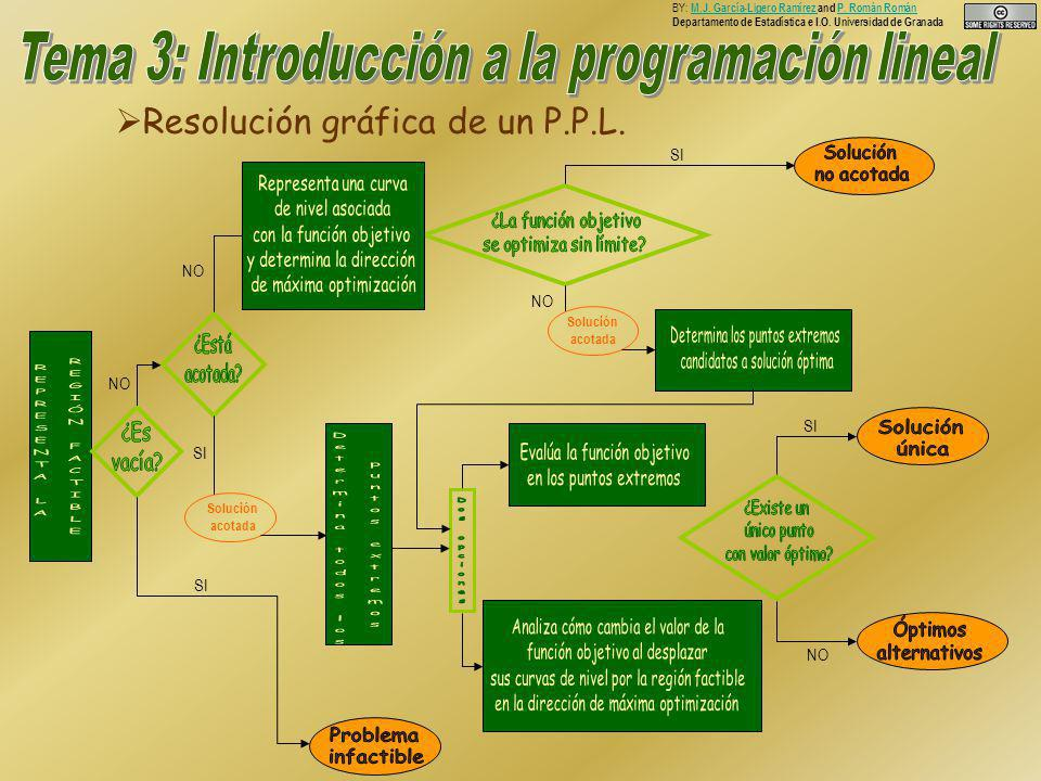 Resolución gráfica de un P.P.L. Resolución gráfica de un P.P.L.