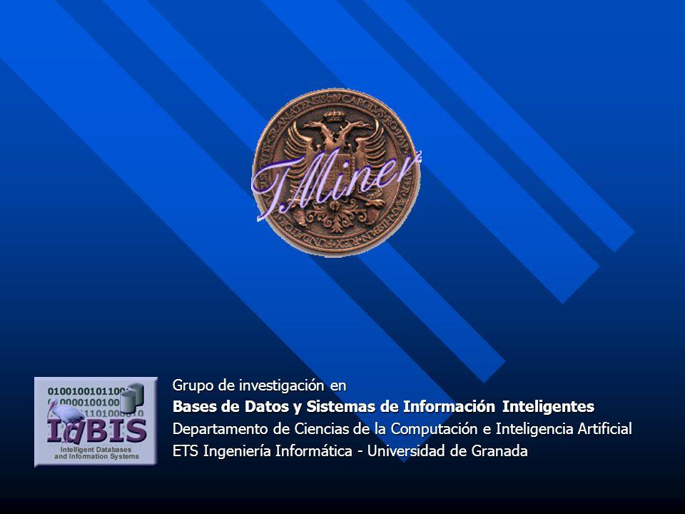 Grupo de investigación en Bases de Datos y Sistemas de Información Inteligentes Departamento de Ciencias de la Computación e Inteligencia Artificial ETS Ingeniería Informática - Universidad de Granada
