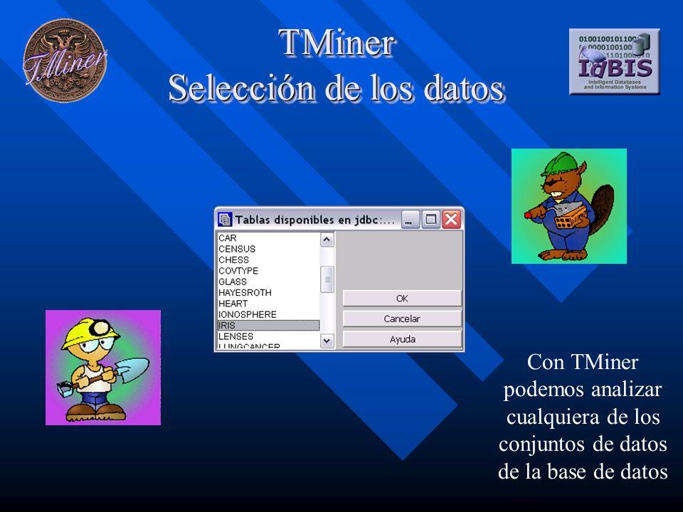 TMiner Selección de los datos Con TMiner podemos analizar cualquiera de los conjuntos de datos de la base de datos