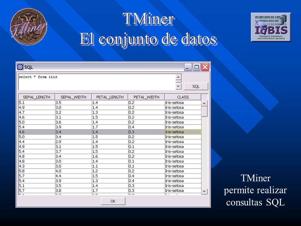 TMiner El conjunto de datos TMiner permite realizar consultas SQL