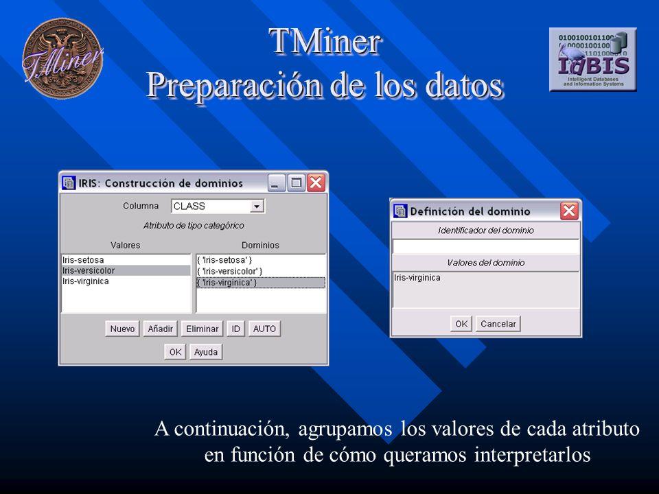 TMiner Preparación de los datos A continuación, agrupamos los valores de cada atributo en función de cómo queramos interpretarlos