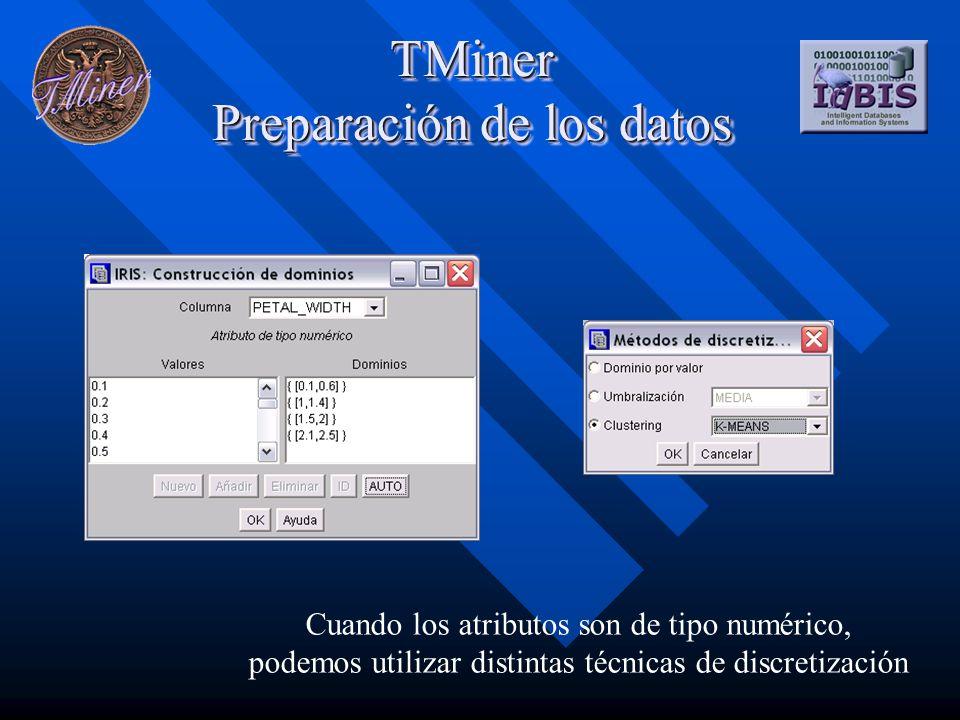 TMiner Preparación de los datos Cuando los atributos son de tipo numérico, podemos utilizar distintas técnicas de discretización