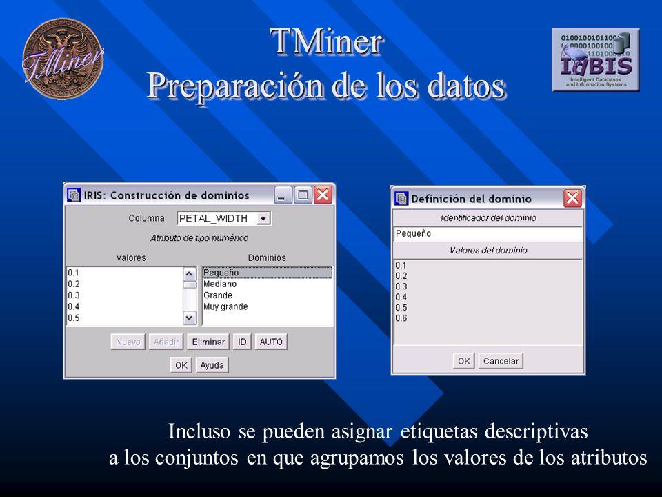 TMiner Preparación de los datos Incluso se pueden asignar etiquetas descriptivas a los conjuntos en que agrupamos los valores de los atributos