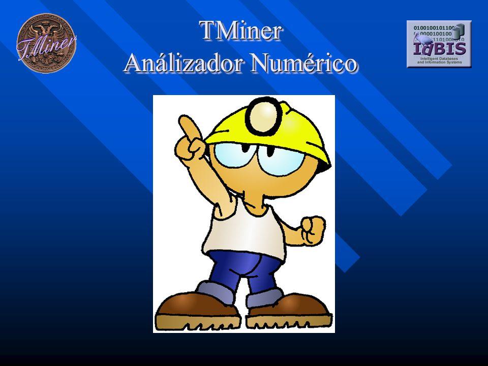 TMiner Análizador Numérico