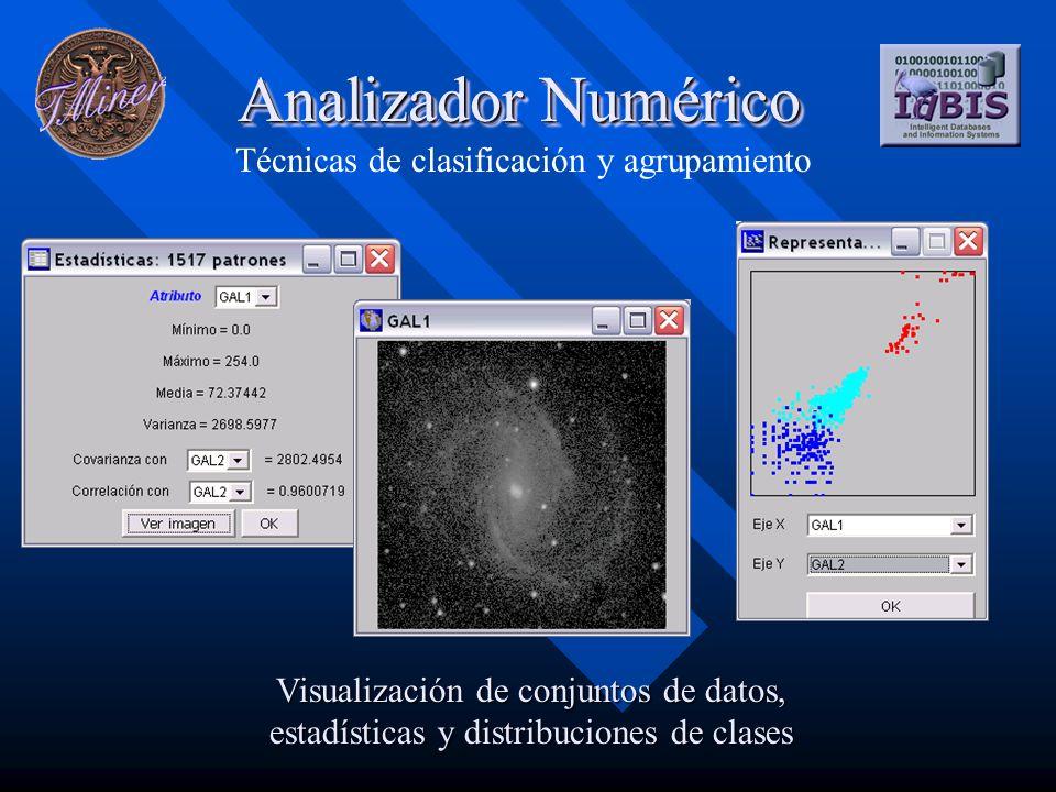 Analizador Numérico Técnicas de clasificación y agrupamiento Visualización de conjuntos de datos, estadísticas y distribuciones de clases