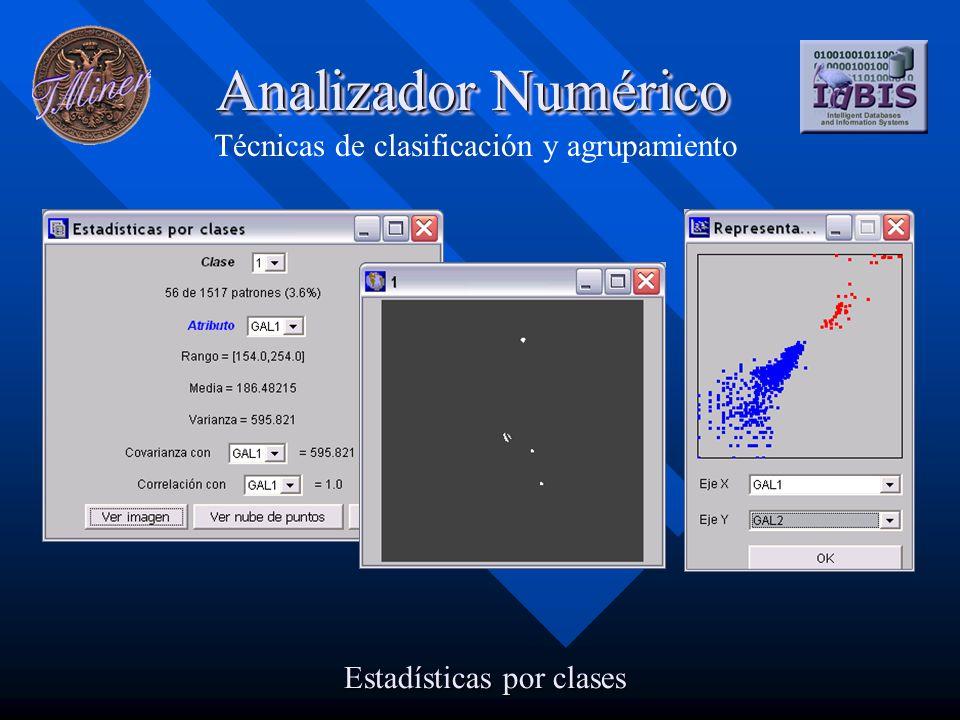 Analizador Numérico Técnicas de clasificación y agrupamiento Estadísticas por clases