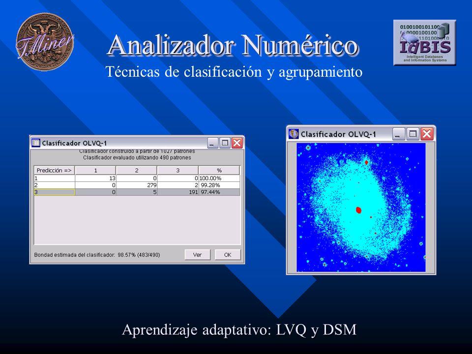 Analizador Numérico Técnicas de clasificación y agrupamiento Aprendizaje adaptativo: LVQ y DSM
