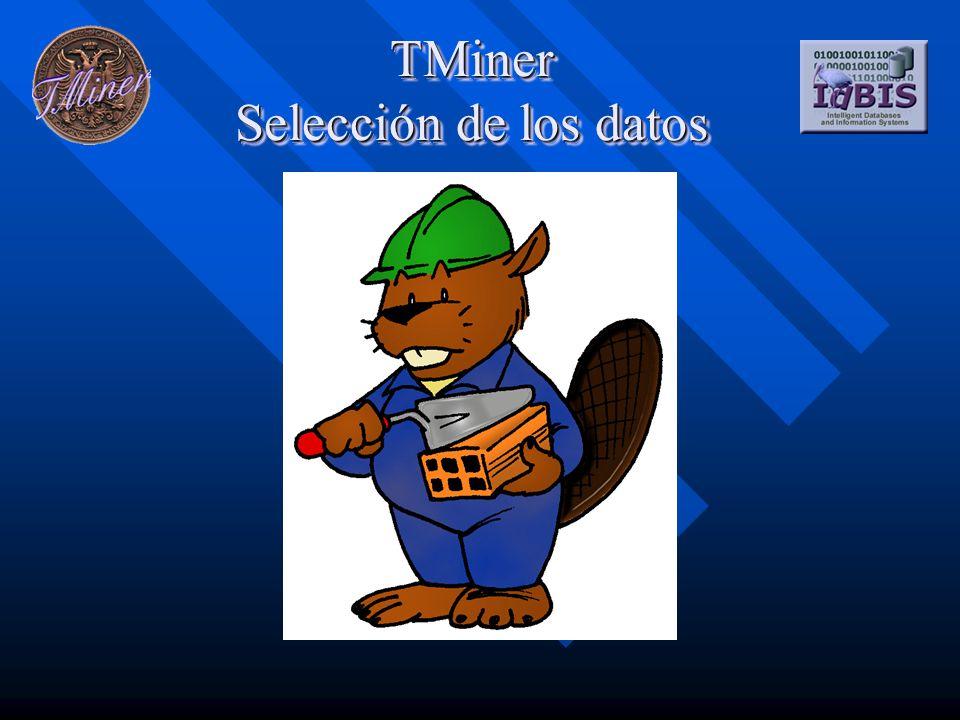 TMiner Selección de los datos