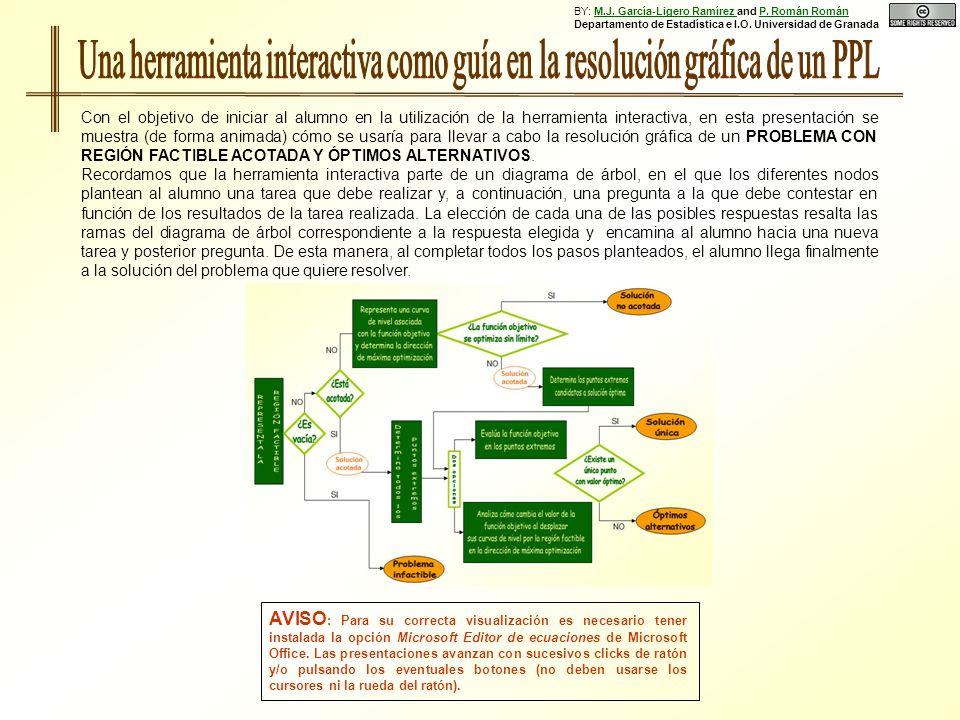 BY: M.J. García-Ligero Ramírez and P. Román Román Departamento de Estadística e I.O.