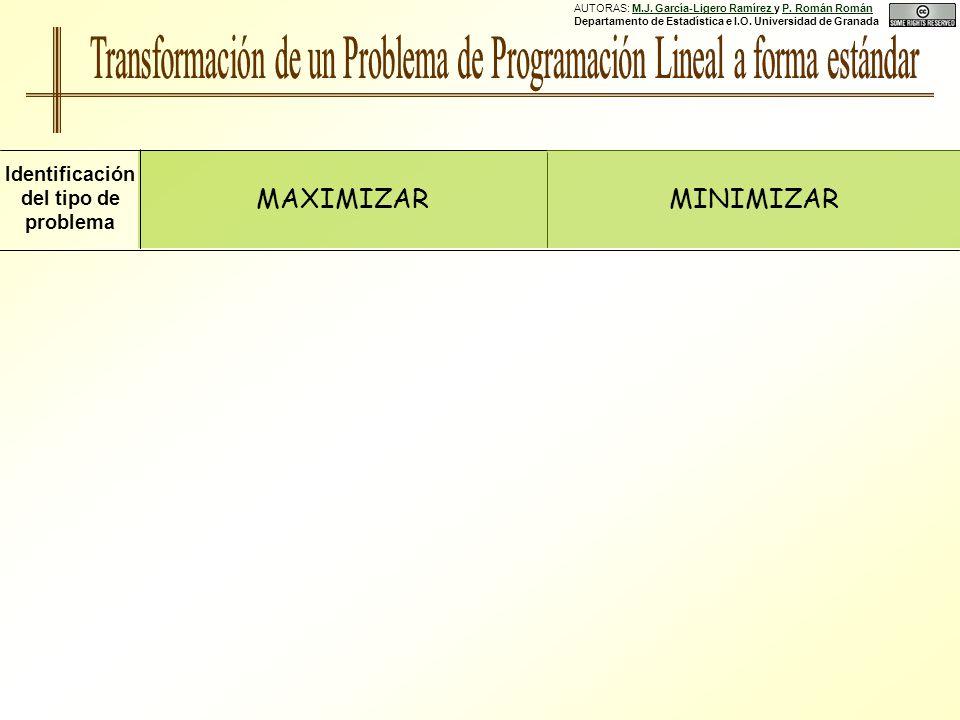 AUTORAS: M.J.García-Ligero Ramírez y P. Román Román Departamento de Estadística e I.O.
