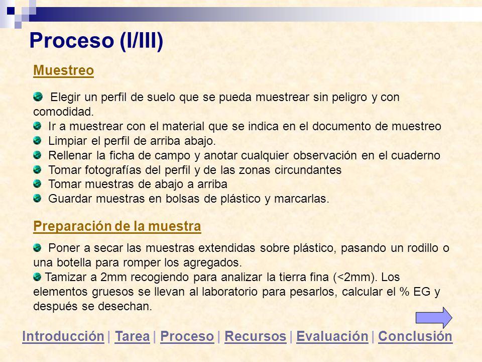 Proceso (I/III) Muestreo Elegir un perfil de suelo que se pueda muestrear sin peligro y con comodidad. Ir a muestrear con el material que se indica en