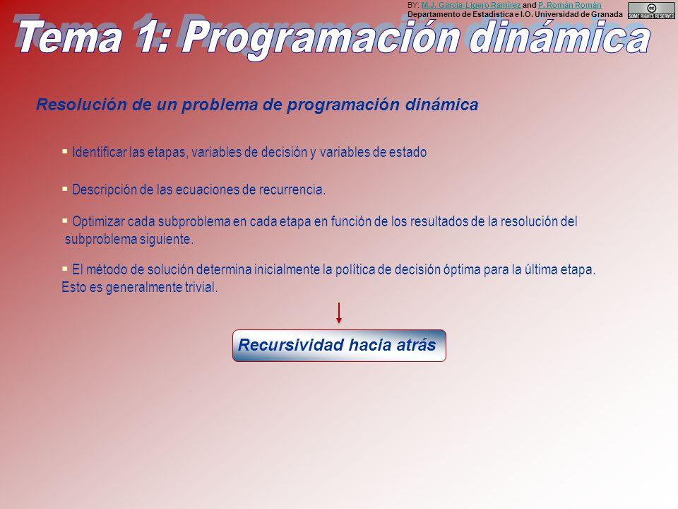 Resolución de un problema de programación dinámica Descripción de las ecuaciones de recurrencia.